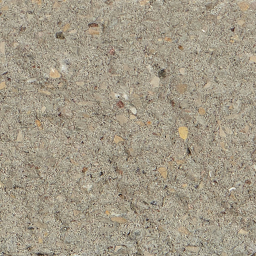Solid Standard - Gray