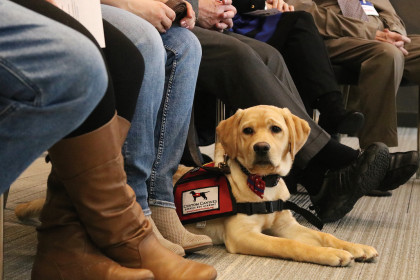County Materials' Supports Custom Canines Heroes for Heroes Program