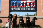 Supporting Those Who Served: Ketchum's Ride