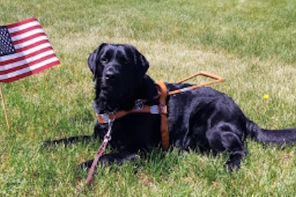 County Materials Partners with OccuPaws to Pair Deserving Individuals with Fully Trained Guide Dogs